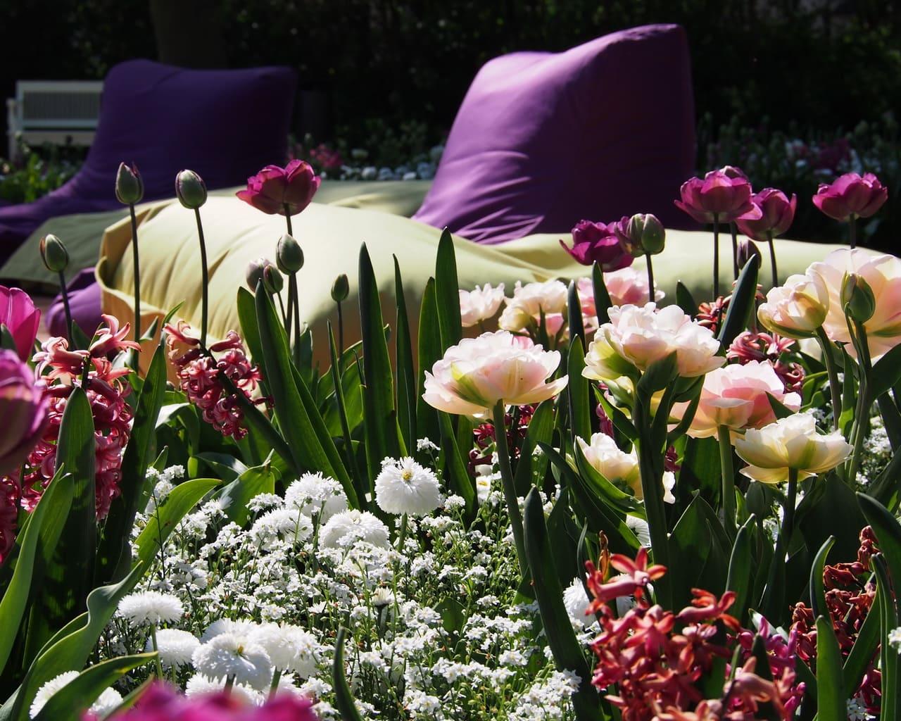 Silent Islands mit Tulpen im Frühling, Landesgartenschau Eutin 2016, Planung Petra Pelz