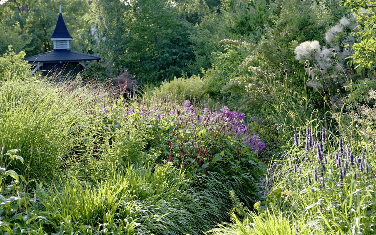 Entspannung und Auszeit im Garten, hier ein Beispiel Privatgarten Petra Pelz in Biederitz, Foto Ferdinand von Luckner