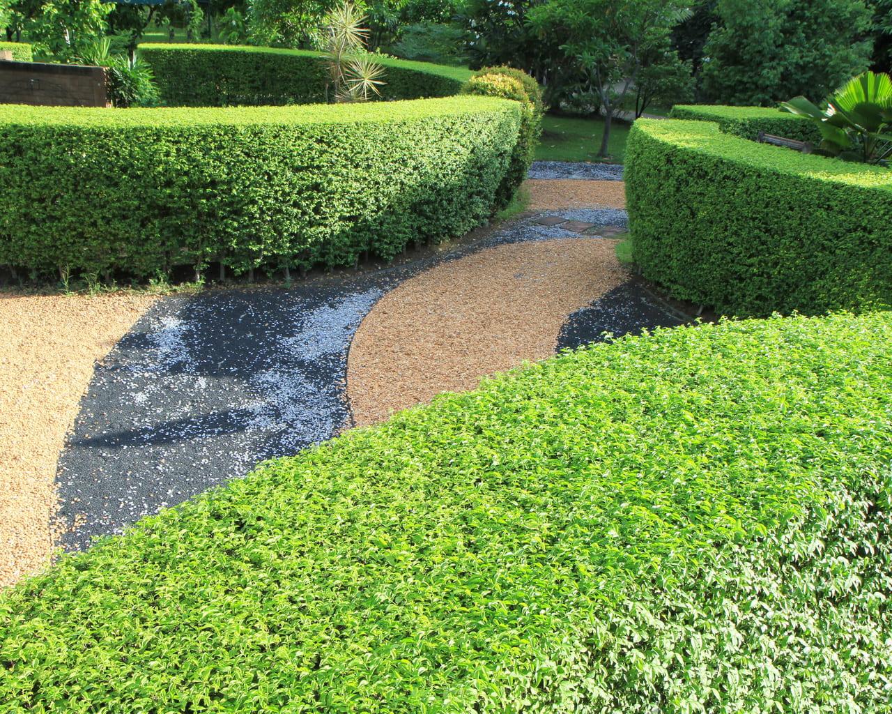 Räume schaffen durch Hecken, Garten mit Hecken strukturieren