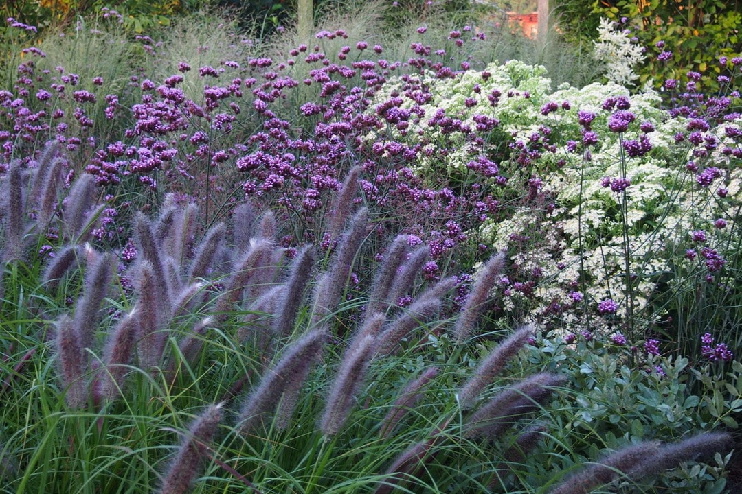 Garten Rethmar 04
