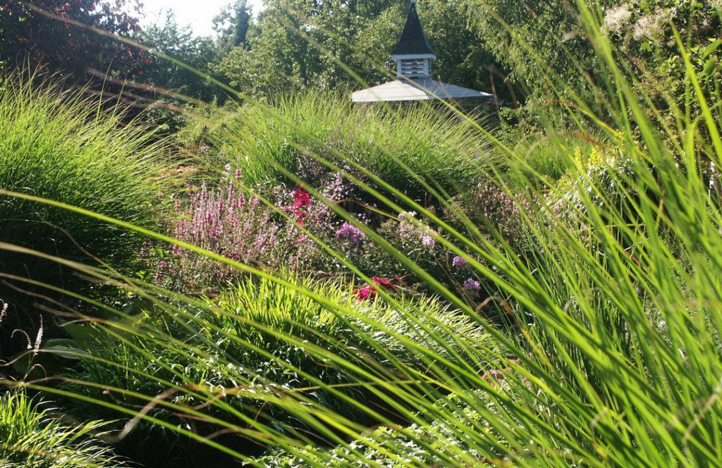 Garten mit Stauden und Gräsern anlegen