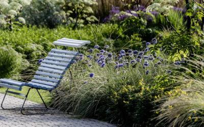 BUGA Erfurt 2021 – Pflanzen die im Spätsommer und im Herbst blühen
